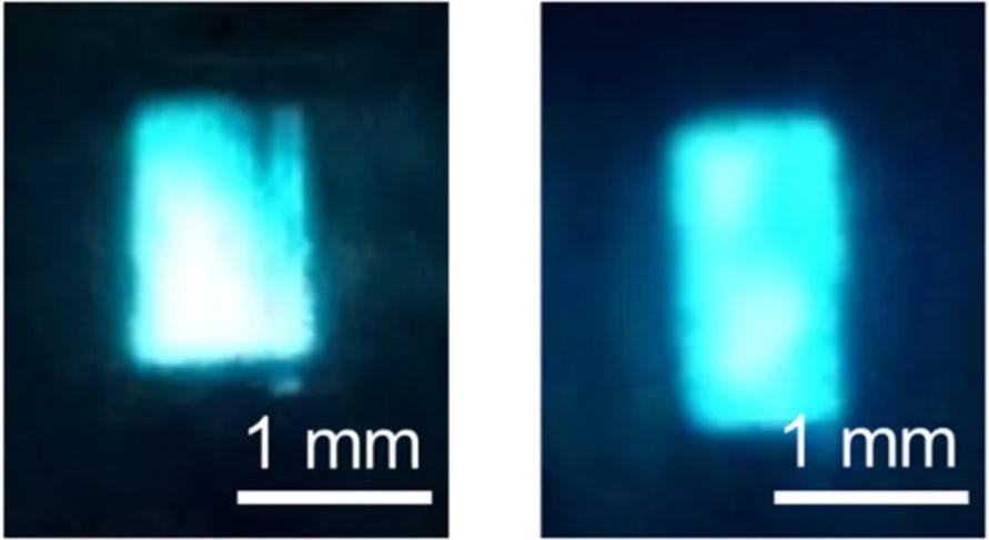 メッシュパターンITO電極を用いた液体有機EL 早稲田大学